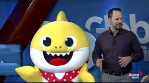 Baby Shark visits Global News Winnipeg ahead of KidsPalooza