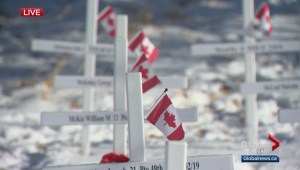 Calgary Remembers: Global Calgary Remembrance Day broadcast from the Field of Crosses