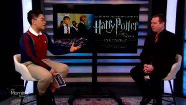 Harry Potter banned from school library for including
