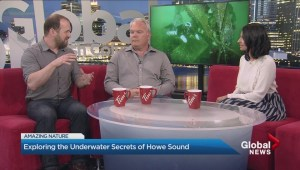 Exploring the underwater secrets of Howe Sound