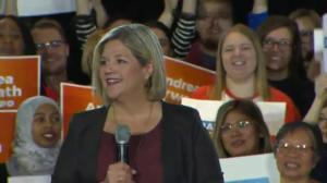 NDP leader Andrea Horwath says she will stop Hydro privatization