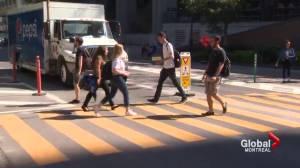 Dawson College crosswalk installed (02:37)