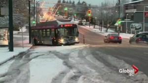 Lower Mainlanders unprepared for first snowfall