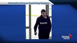 Abbotsford purse snatcher identified and arrested