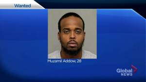 Canada-wide warrant issued for 3rd suspect in alleged armed kidnapping of Wanzhen Lu