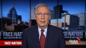 Mitch McConnell thanks protesters for 'energizing' Republicans