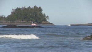 Tofino search for three missing men
