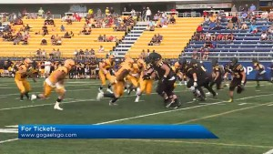 Queen's University Football Gaels Head coach Pat Sheahan