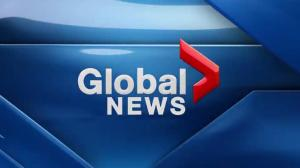 Global News at 5 Edmonton: Feb 6