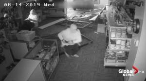Surveillance video of southeast Edmonton electronics store smash-and-dash