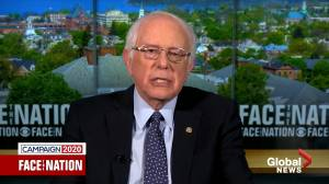 'I have no reason not to believe Lucy': Bernie Sanders weighs in on Joe Biden controversy