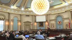 City councillors conflicted over the future of age-based discounts