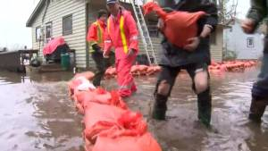 Neighbours helping each other save their homes from flooding in Bracebridge, Ont.