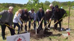 Trudeau plants tree as part of the Highway of Heroes Tree Campaign