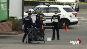 IHIT investigating fatal stabbing outside Surrey mall