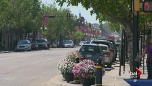 Riversdale a storied neighbourhood
