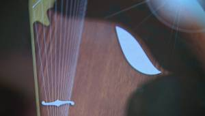 Coded in Sask. – Vulcan Harp