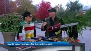 Wrapping up your yard for Fall