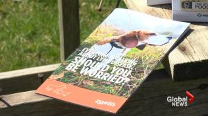 N.S. vets warn of tick-born illnesses