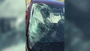 Langley family's vehicle hit by flying tire on B.C. highway