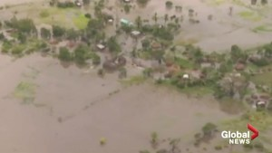 Cyclone Idai leaves hundreds dead in Mozambique