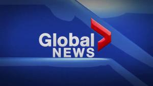 Global News Hour at 6 Edmonton: Nov. 8