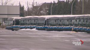 Shortage of STM Equipment