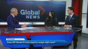 The Panel: John McCallum's Huawei comments, and MP Nicola Di Iorio's resignation