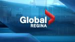 Should Regina ban single-use plastic bags?