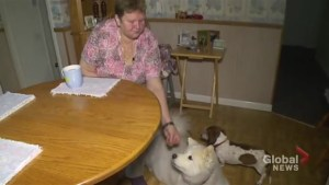 Woman says Oshawa co-op denied her housing because of her therapy dogs
