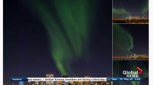 Albertans tweet photos of northern lights