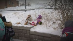 5-year-old girl dies after being pinned between two vehicles