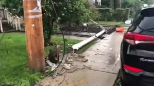 Severe storm causes damage in several Toronto neighbourhoods