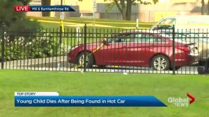 Child dies after being left in hot car behind Etobicoke apartment