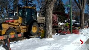 Lethbridge saw 20 water main breaks in February