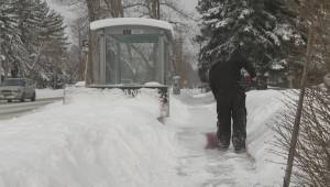 More snow on the way for Calgary