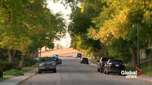 Calgary considering reduced speed limit for residential roads