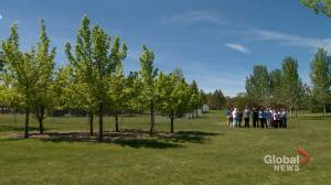 Groundbreaking for legacy garden to honour 5 lives lost in Calgary five years ago