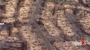 Santa Rosa neighbourhood levelled by northern California wildfire