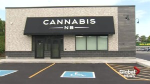 A sneak peek inside stores that will sell pot