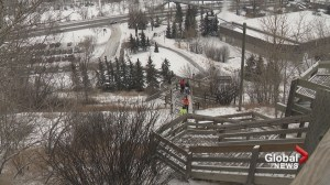 'Social disorder' at Calgary's Crescent Heights stairs targeted by city officials