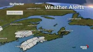 Global News Morning Forecast: April 8