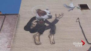 Montreal pit bull mural