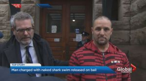 Alleged Toronto shark tank swimmer, assault suspect out on bail