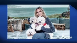 Barbara Streisand loves her dog this much