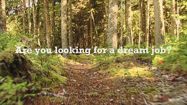 Wanted: Outdoorsy explorers for 'ultimate Canadian dream job'