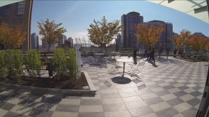 Vancouver library central branch rooftop garden sneak preview