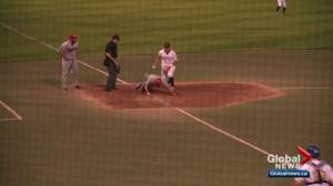 Edmonton Prospects could move on to WMBL final