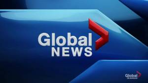 Global News at 5: Jun 12 Top Stories