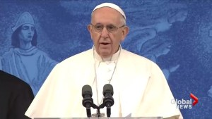 Pope begs forgiveness for 'betrayal' of Church abuse